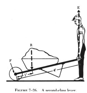exle of lever simple machine